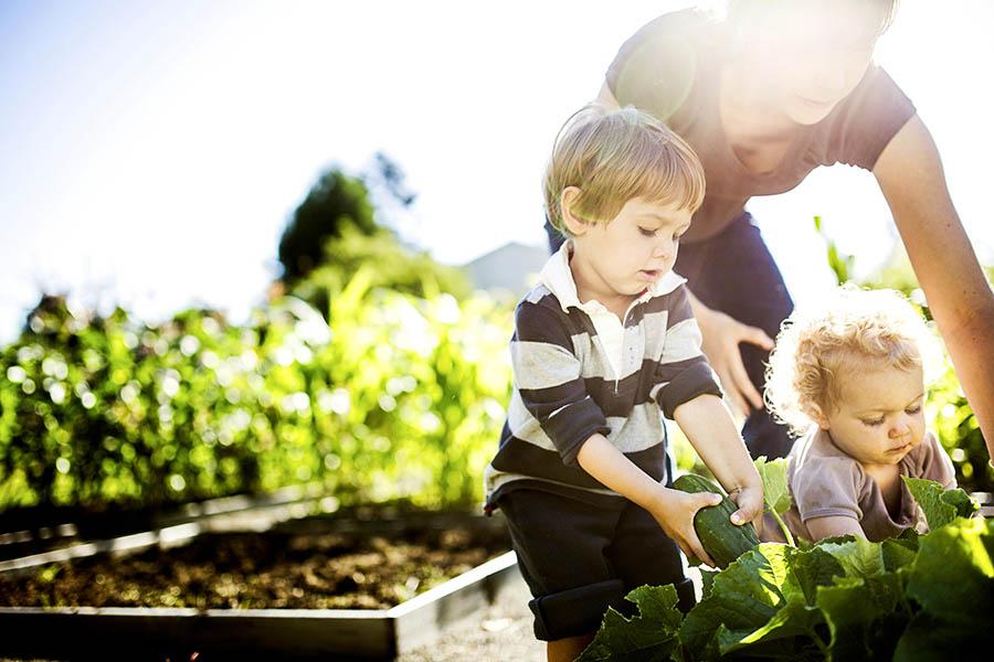 Planning for Minor Children